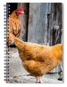 Chickens At The Barn Spiral Notebook