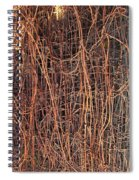 Chickenwire Rusty Spiral Notebook