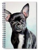 Chihuahua Black Spiral Notebook
