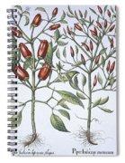 Chilli Pepper Plants Spiral Notebook