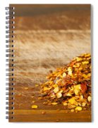 Chilli Seeds Spiral Notebook