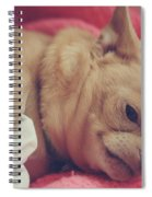 Chillin Spiral Notebook