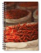 Chillis 2010 Spiral Notebook