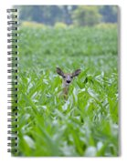 Chin High By The 4th 7395 Spiral Notebook