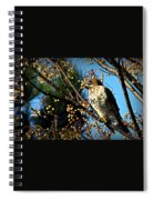 China Berry Hawk Spiral Notebook