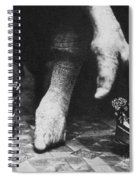 China: Lily Foot, C1900 Spiral Notebook