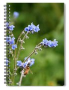 Chinese Forget Me Nots Spiral Notebook