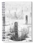 Chinese Grave Markers Spiral Notebook