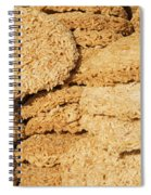 Chinese Rice Cakes Spiral Notebook