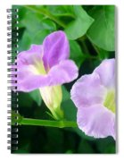Chinese Violet  1 Spiral Notebook