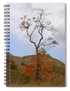 Chino Hills Tree Spiral Notebook