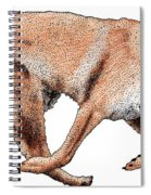 Chinook Spiral Notebook