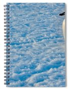 Chinstrap Penguin Spiral Notebook