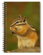 Chipmunk Loving Honey Roasted Peanuts Spiral Notebook