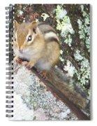 Chipmunk On A Log Spiral Notebook