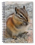 Chipmunk  Spiral Notebook