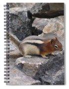 Chipmunk Tones Spiral Notebook