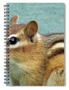 Chipmunk Portrait Spiral Notebook
