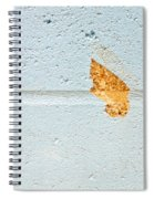 Chipped Brickwork Spiral Notebook