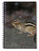 Chipper Spiral Notebook