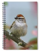 Chipping Sparrow In Blossoms Spiral Notebook