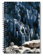 Chiricahua Pinnacles D Spiral Notebook