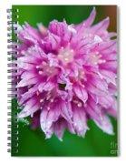 Chive Flower Spiral Notebook