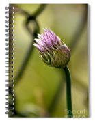 Chive In Bloom Spiral Notebook