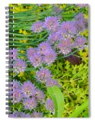 Chives 3 Spiral Notebook