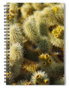 Cholla Cactus Garden Mirage Spiral Notebook