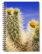 Cholla Cactus In Joshua Tree By Diana Sainz Spiral Notebook