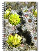 Cholla Flowers Spiral Notebook