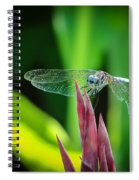 Chomped Wing Spiral Notebook