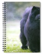 Chow Chow Dog Spiral Notebook