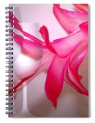 Christmas Cactus And Two Glasses Spiral Notebook