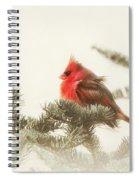 Christmas Cardinal Spiral Notebook