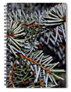 Christmas Dream Spiral Notebook