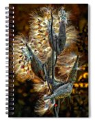 Christmas Floozy Spiral Notebook