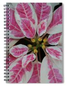 Christmas Floral Spiral Notebook