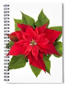 Christmas Poinsettia  Spiral Notebook