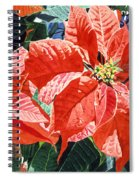 Christmas Poinsettia Magic Spiral Notebook