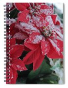 Christmas Poinsettia Flowers Spiral Notebook