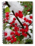 Christmas Snow Spiral Notebook