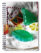 Christmas Thoughts Soap Spiral Notebook