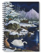 Christmas Wonder Spiral Notebook