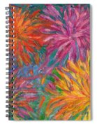 Chrysanthemums Like Fireworks Spiral Notebook