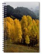 Cimarron Forks Spiral Notebook