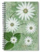 Cinco Spiral Notebook