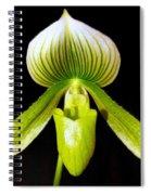 Cinderella's Slipper Spiral Notebook