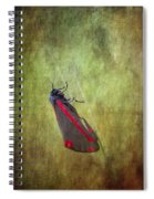 Cinnabar Moth Art Texture Wall Decor. Spiral Notebook